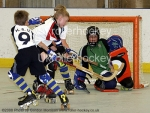 Under 11's Kings Lynn v HBU