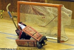 HockeySkate-at